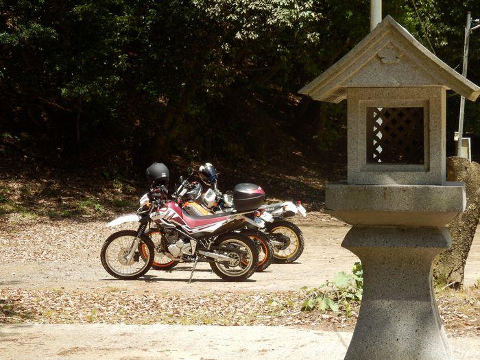 八塔寺、いこいの村林道 (40)
