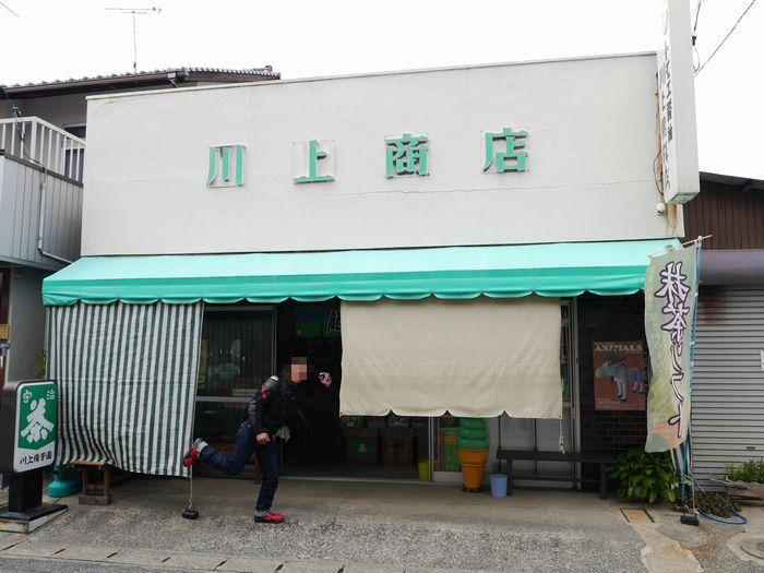 抹茶ソフト (27)