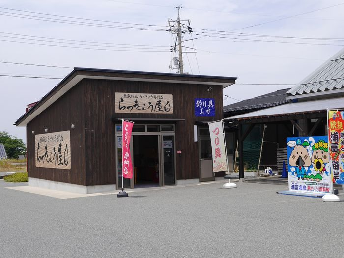 鳥取 (29)