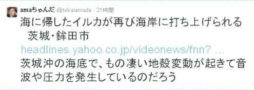 ama+iruka_convert_20150412124529.jpg