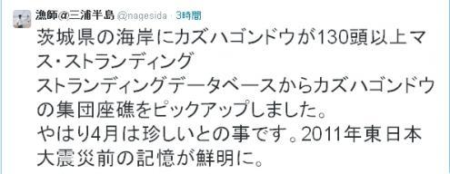 ryousi+_convert_20150410170035.jpg