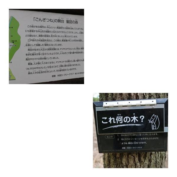 IMG_7280-3.jpg