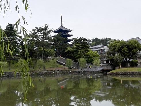 13 猿沢池と興福寺