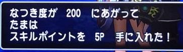 natuki200.jpg
