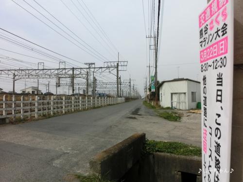 熊谷さくらマラソン・2015_02
