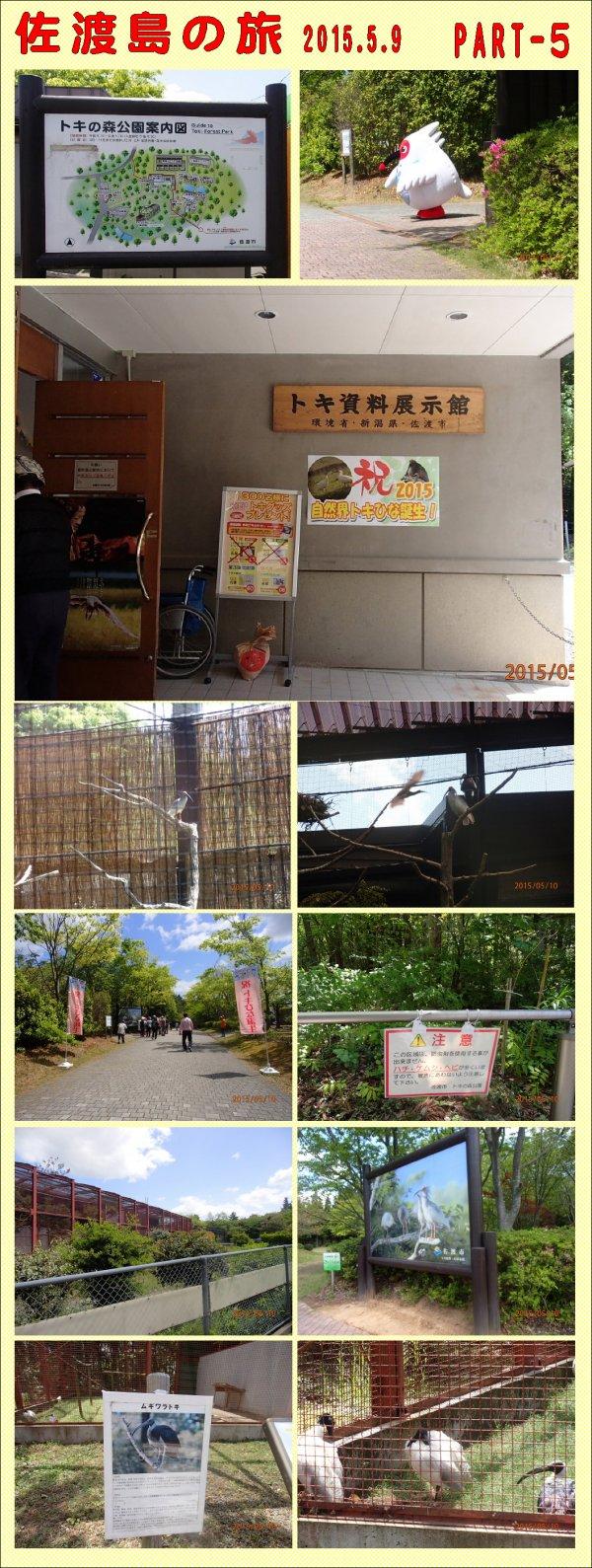 佐渡島の旅part-5