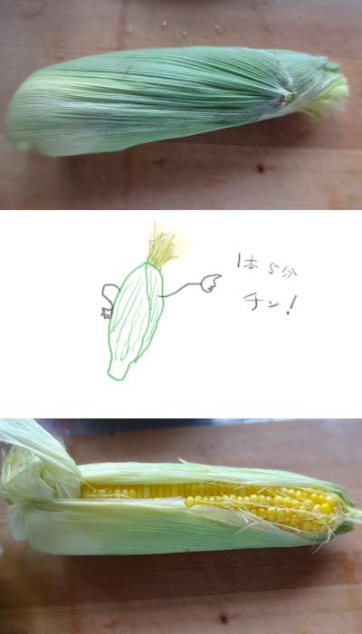 トウモロコシ
