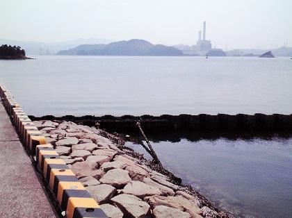20150113大潟岸壁 (5)