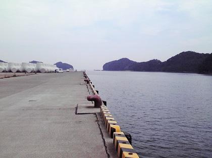 20150113大潟岸壁 (1)