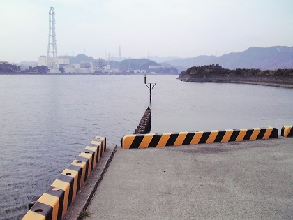 20150113大潟岸壁 (2)