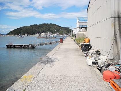 20150115庵治漁港 (9)
