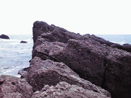 20150316銭ヶ浜・園地下 (1)