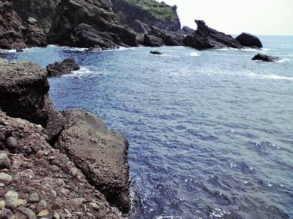 20150316銭ヶ浜・園地下 (6)