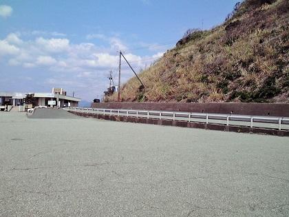 20150316銭ヶ浜・園地下 (9)