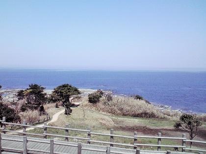 20150412五色浜・ヒロイソ1