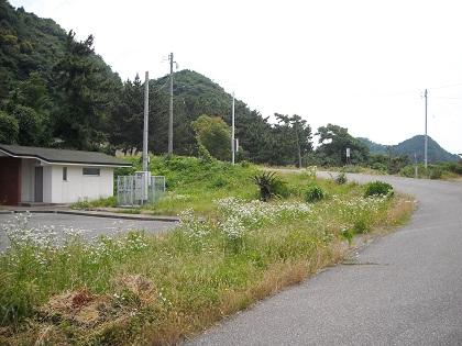 20150503鮎川・長グリ3