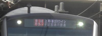 CIMG5966.jpg
