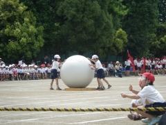 15小学校運動会3