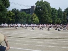 15組体操3