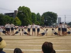 15組体操14