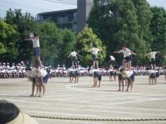 15組体操17
