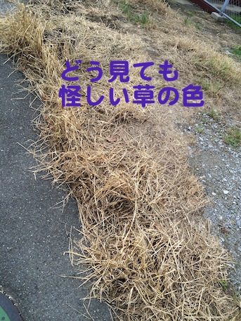 20150610-4.png