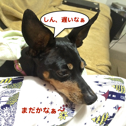 20150618-1.png