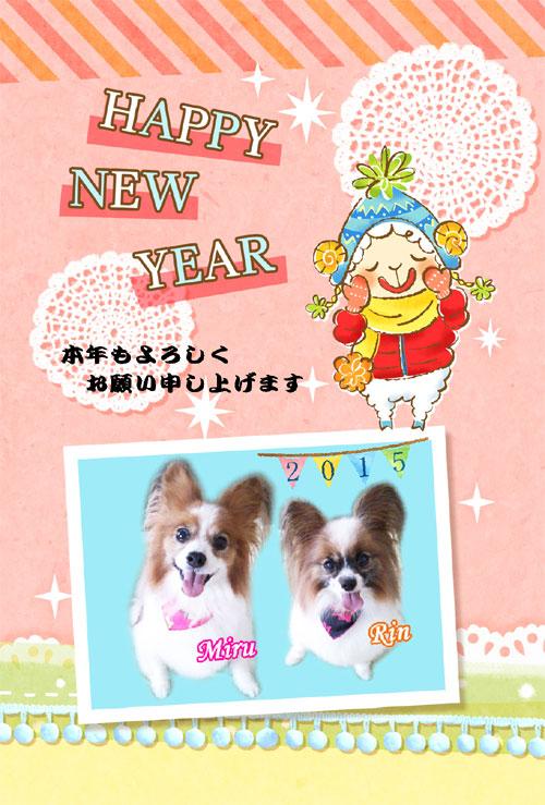 20150112_02.jpg