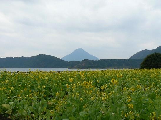 2201池田湖1