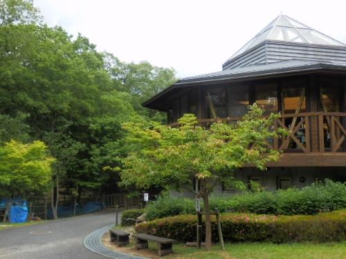 三木ホースランドパーク (5)_resized