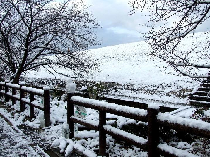 2015_0102元旦初雪風景20015