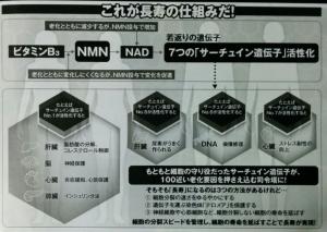 NMN 01