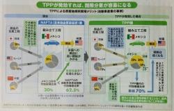 TPP 09