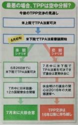 TPP 10