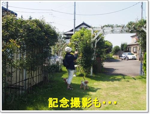 20150711_054.jpg