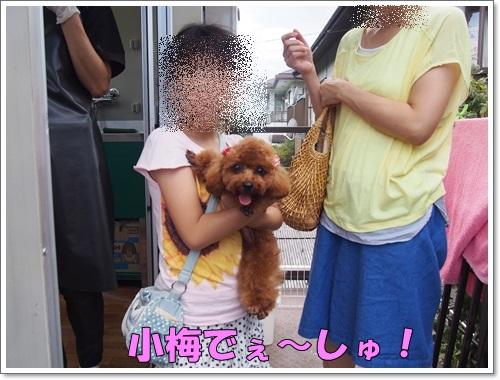 20150719_092.jpg