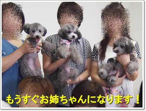 20150730_050.jpg