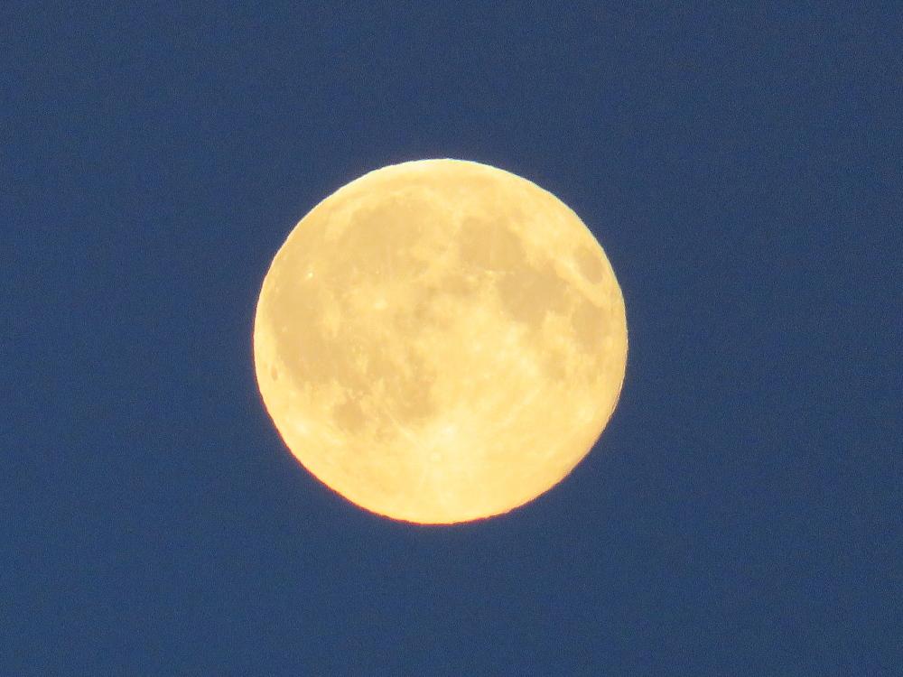 Blue Moon ブルームーン 2015年7月31日