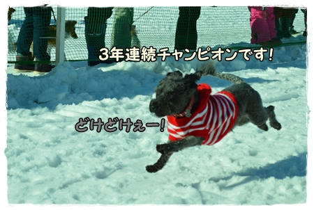 DSC_0195.jpg