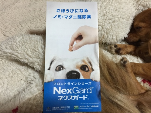 fc2blog_20150422211143591.jpg