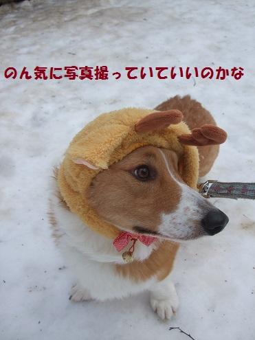 01141222DSCF0051.jpg
