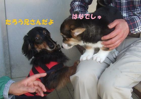 01150501DSCF0085.jpg