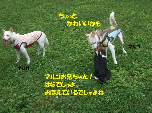 02150615DSCF0101.jpg