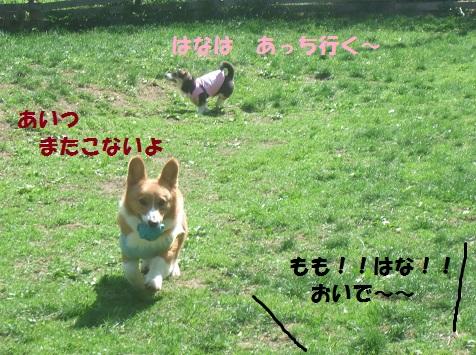 03150521DSCF0237.jpg