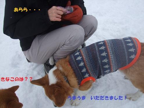 18141230DSCF0062.jpg