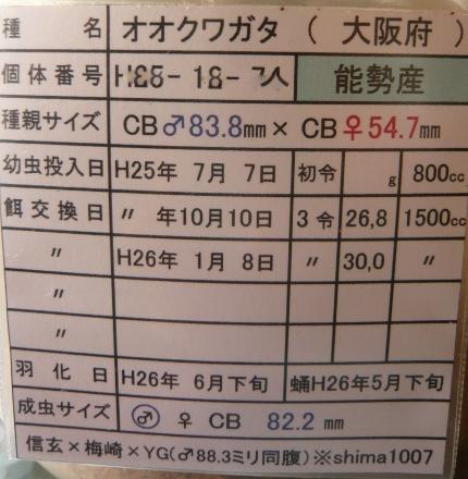 P1010428 (430x440)