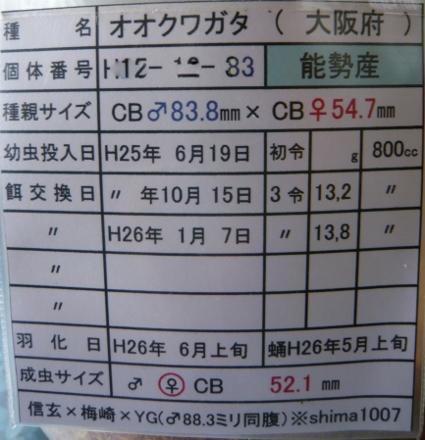 P1010429 (425x440)
