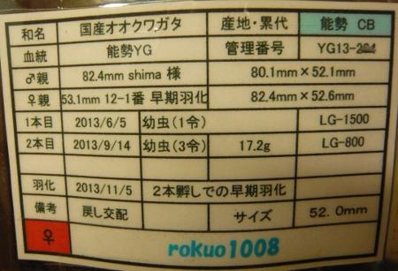 P1010487 (450x307)
