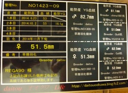 P1010512 (450x328)