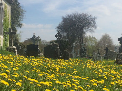 spring graves2